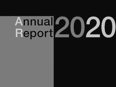 RiskApps-annualreport-2020